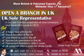 Apply UK Sole Representative Visa Through our Experts.